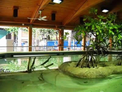 These Aquariums Contain Custom Designed And Built Habitats To Represent The  Communities.